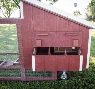 Chicken tractor for sale texas