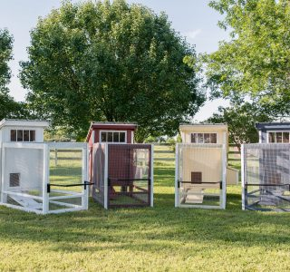 Chicken tractors for sale by lone star structures