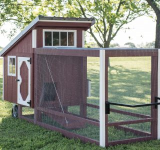 Texas chicken tractors for sale