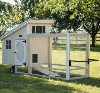 Wood chicken coops for sale
