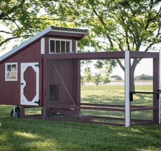 Wood chicken coops with runs for sale