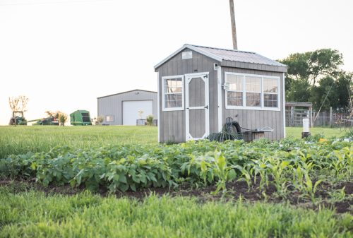 Portable greenhouse for sale