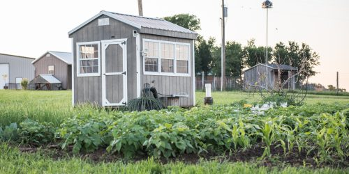 Portable greenhouse for sale in texas