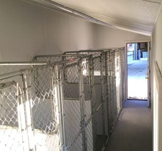 Commercial dog kennel with floor for sale in austin texas